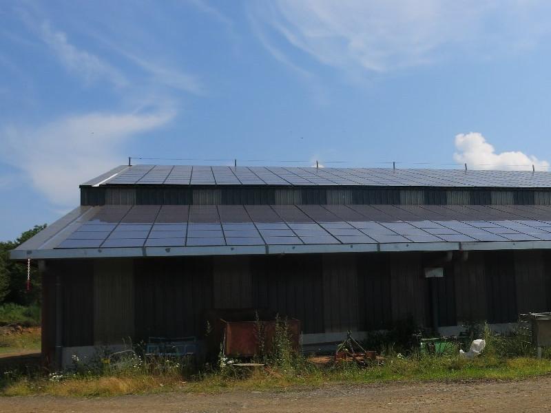 Vue de panneaux photovoltaïques sur un bâtiment agricole.